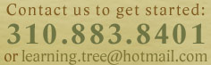 310.883.8401 or learning.tree@hotmail.com